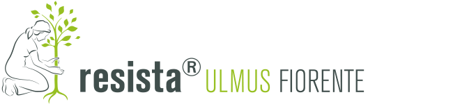 Logo resista Ulmus Fiorente