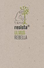 Pict Produktblatt Rebella