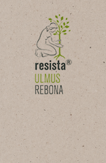 Pict Produktblatt Rebona